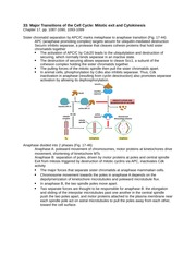 Major Transitions of the Cell Cycle Mitotic exit and Cytokinesis Study Guide