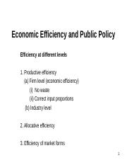 Ch. 12 - Economic Efficiency and Public Policy.ppt