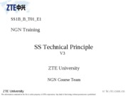 06 SS Technical Principle