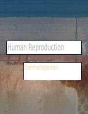 Human Reproduction.ppt
