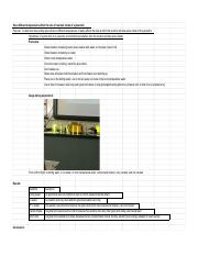 Lab Notebook - Sidney Brown - Glow Stick Lab.pdf