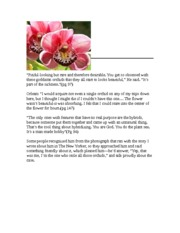 the orchid thief essay