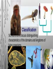 classification__1_.ppt