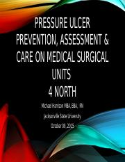 Pressure ulcer power point