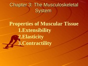 Kinesiology Chapter 3