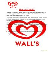 PROJECT REPORT ON WALL old hassan - for merge.docx