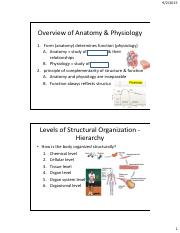 1-Anat - Intro to Anatomy (ELAC)