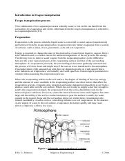 Introduction to Evapotranspiration