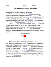 Cell+Membrane+Coloring+Sheet+%28Knowledge%29 - NAME DATE ...