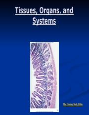 Tissues, Organs and Systems PPT (2).ppt