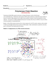 Polymerase Chain Reaction POGIL with ANSWER KEY
