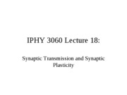 Lecture 18 Synaptic Transmission and Synaptic Plasticity