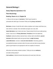 Study Objective Questions w/ Answers #21 Plant Morphology
