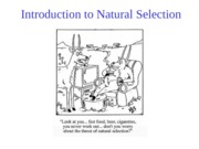 Topic 4,+Introduction+to+Natural+Selection