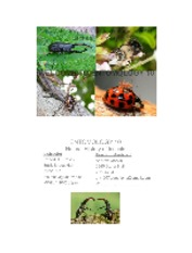 Ent10+Lect+1+Introduction+to+Entomology