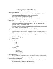 Subgroups and Social Stratification Anthro Lecture.docx