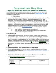 CH15 Genes and how they work.docx