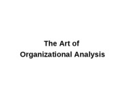 Organizational Analysis0