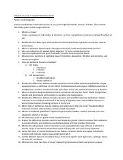 Module 2 Lesson 1 Guided Notes Document