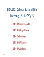 022015 - BIOL172 - DNA replication, DNA repair, mutations.pdf