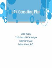 LAN Consulting Plan