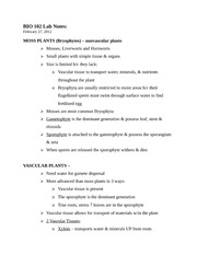 The cell cycle and cancer worksheet 1 virtual lab the cell cycle 3 pages bio 102 lab notes 2 27 12 ibookread ePUb