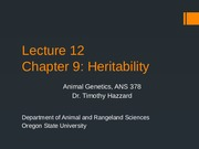 Lecture 12 Chapter 9