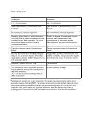 Exam 1 Study Guide Microbiology - Google Docs
