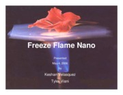Flame Retardants-2006-Presentation