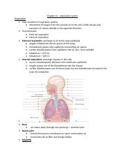 Chapter 12 –respiratory system notes and study guide