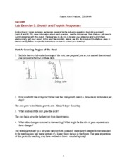 Lab_5_Worksheet-1