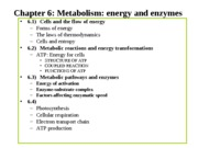 Chapter 6 - Energy%20and%20enzymes%20%20s120