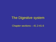digestive system lecture