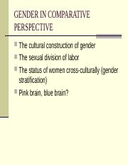 102-21 GENDER IN COMPARATIVE PERSPECTIVE