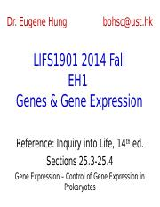7.Genes and Gene Expression.ppt