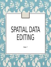 6Spatial data editing.pptx