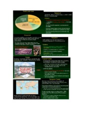 Forest and Conservation Powerpoint