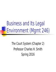 Mgmt 246--Sp16 Court System and Lawsuit.ppt