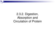 2.3.2 digestion of protein-r