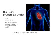 Lecture17_Heart