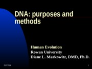 DNA and Protein Production