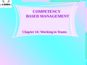 Chapter 14-Working in Teams