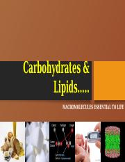Carbohydrates & Lipids.pptx