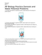 Practice Osmosis and Water Potential Problems