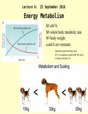 Lecture 6s_Aerobic and Anaerobic Metabolism and Activity_26 Sept 2016