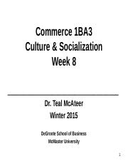 1BA3Week8 culture and socialization.ppt