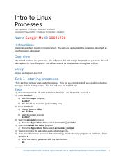 IT1510 Lab-Processes.docx