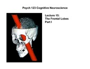 lecture15 Frontal Lobes Part I