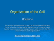 chapter4 Org of the Cell 2011