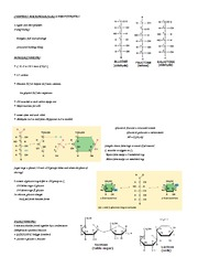 Chapter 5 - Macromolecules Notes